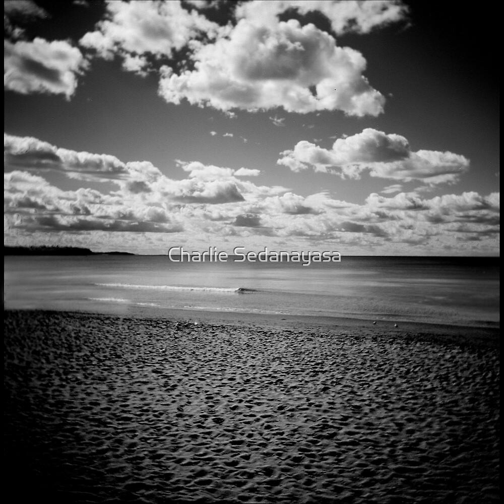 ... holga afternoons ... by Charlie Sedanayasa