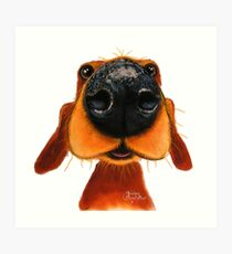 NOSEY DOG 'NOSEY NANDO' BY SHIRLEY MACARTHUR Art Print