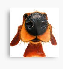 NOSEY DOG 'NOSEY NANDO' BY SHIRLEY MACARTHUR Metal Print