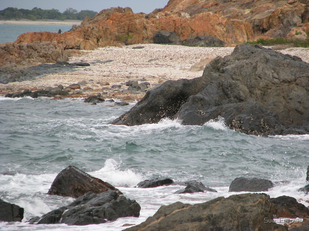 """She's Rocks"" by Sue  Fellows"