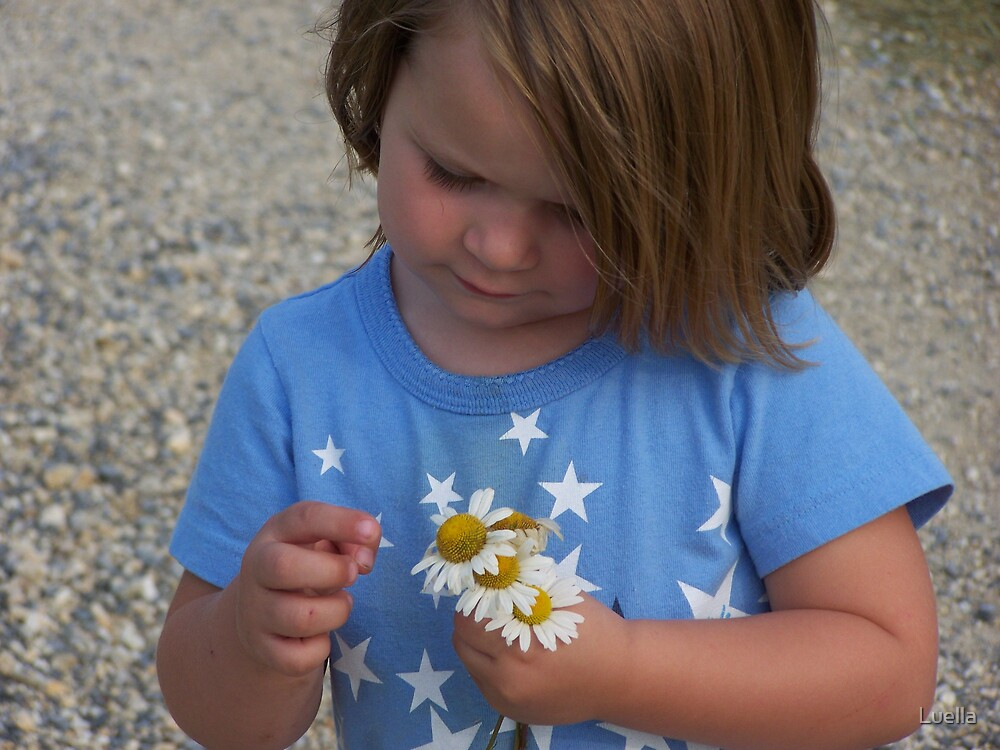 Daisy's for me by Luella