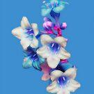 Simply Blue by Christine Lake