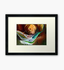 Dreamscape - Journey to the Soul of Nature Framed Print