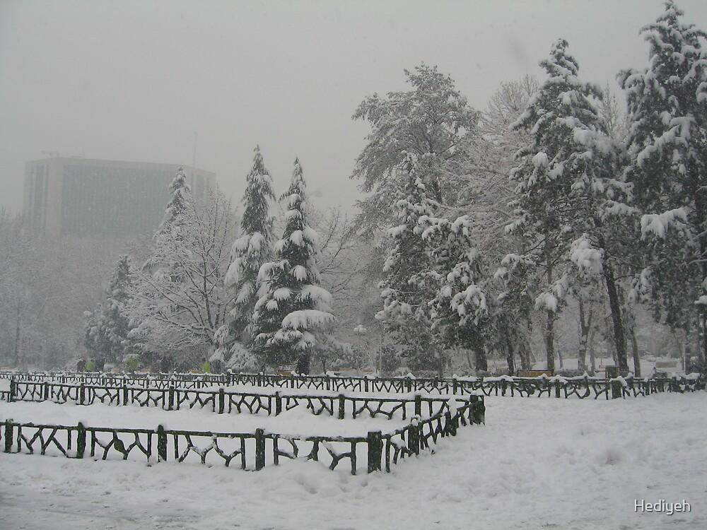 Snow in Tehran by Hediyeh