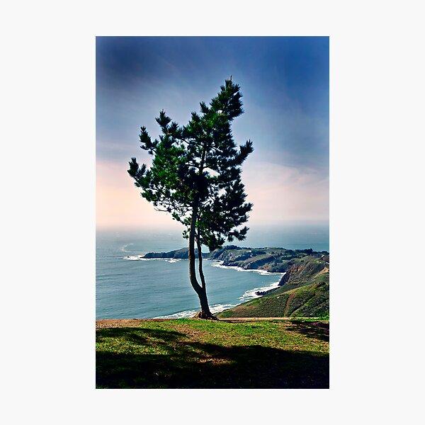 SanFrancisco-Marin Highlands Photographic Print