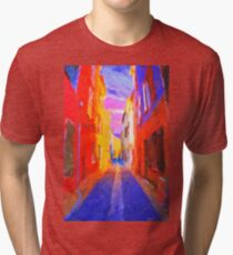 The Walkabouts - Twilight in France Tri-blend T-Shirt