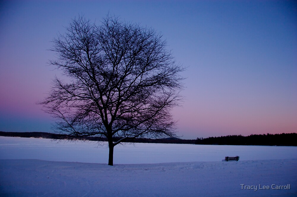 Lake Walk by Tracy Lee Carroll