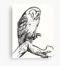 Sleeping Barn Owl Brush Pen Drawing Canvas Print