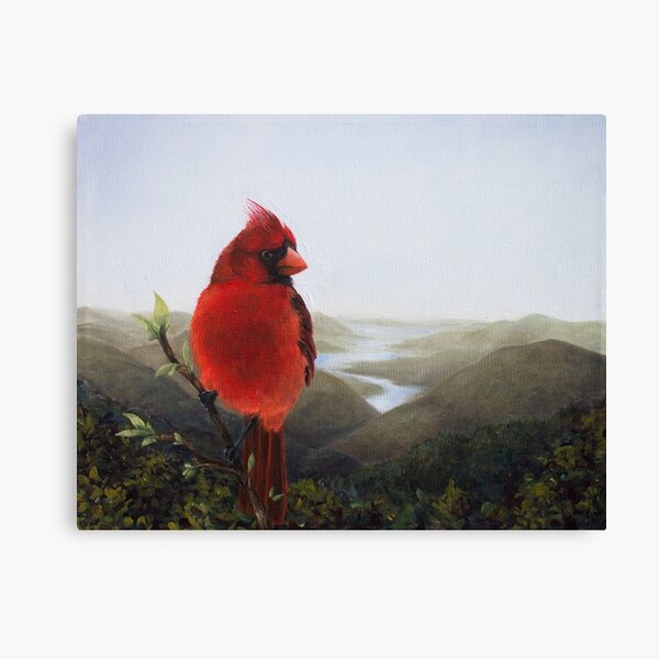Cardinal in the Valley Canvas Print