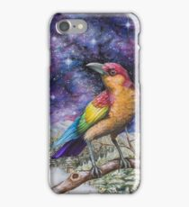 Rainbow Crow iPhone Case/Skin