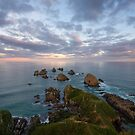 The Lookout -Nugget Point by Linda Cutche