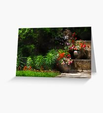 Pots of plants Greeting Card