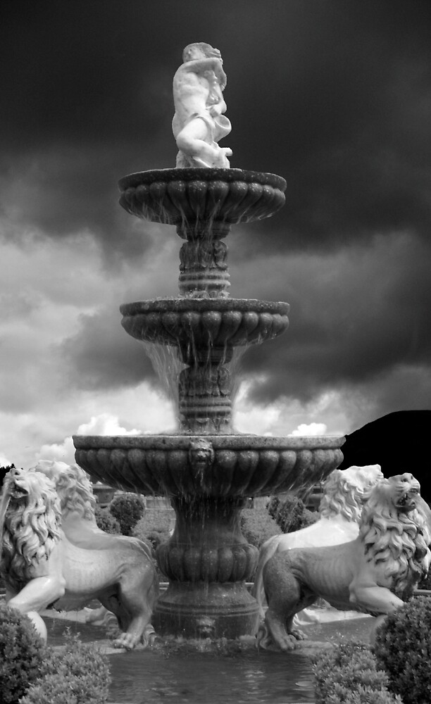 Fountain by Shannan Edwards
