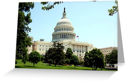 US Capitol by Pat Herlihy