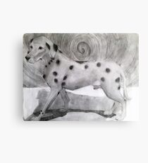 Spotted Dog  Metal Print