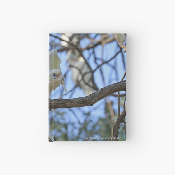 Little Corella  (1012) Hardcover Journal