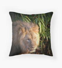 Beautiful Lion Throw Pillow