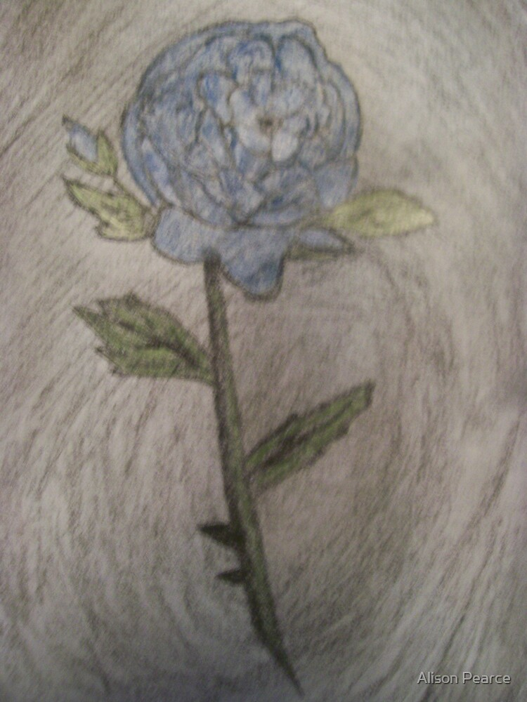 Blue Rose by Alison Pearce