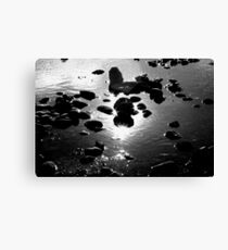 Starry Waters Canvas Print
