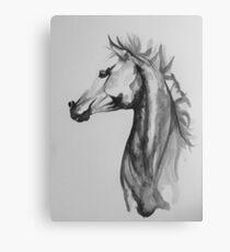 Cheval encre de chine Canvas Print