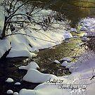 blizzard 3 by LoreLeft27