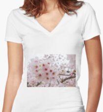 Spring at Himeji Castle Women's Fitted V-Neck T-Shirt