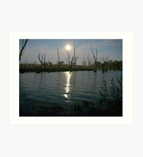 Moonlit Waters Art Print