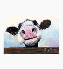 NOSEY COW 'HEY! HOW'S IT GOIN'?' BY SHIRLEY MACARTHUR Photographic Print