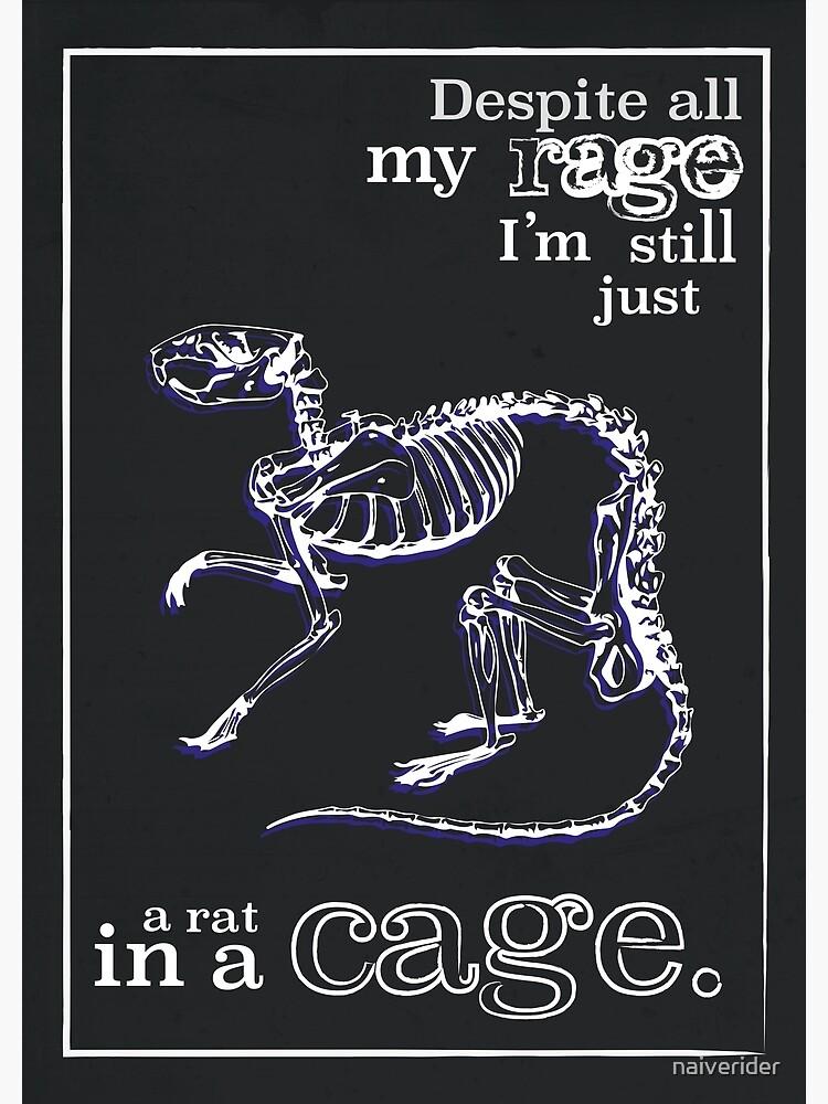 inspirierende Zitate - Ratte in einem Käfig - die überwältigenden Kürbisse von naiverider