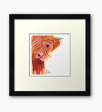 HIGHLAND COW 'GINGER COW LICK' BY SHIRLEY MACARTHUR Framed Print