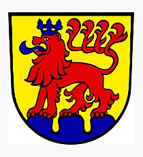 Calw Coat of Arms, Germany Photographic Print