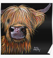 SCOTTISH HAIRY HIGHLAND COW 'HENRY' By Shirley MacArthur Poster