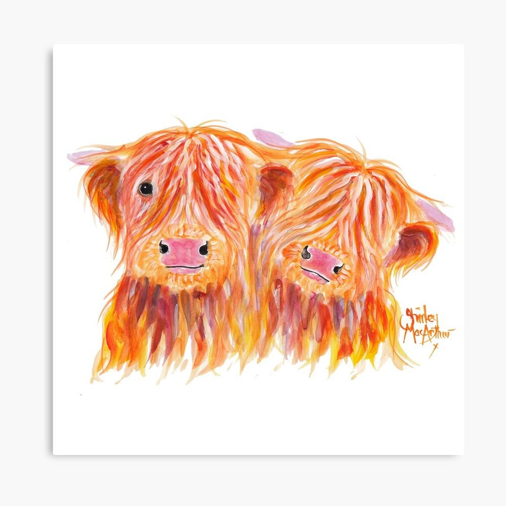 HIGHLAND COWS 'BUDDIES' By Shirley MacArthur Canvas Print