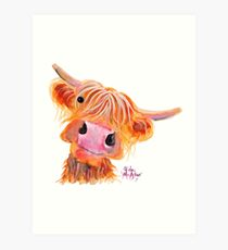 Highland Cow 'NESSIE' from Original Painting by Shirley MacArthur Art Print