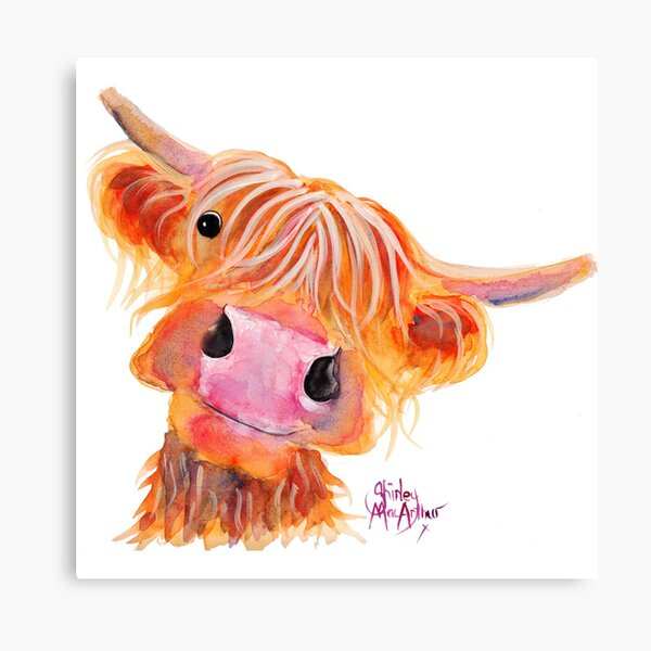 Highland Cow 'NESSIE' from Original Painting by Shirley MacArthur Canvas Print