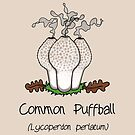 Common Puffball - without smiley face by Immy Smith (aka Cartoon Neuron)