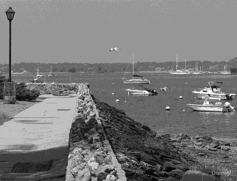 PortWashington, NY by DonnaM