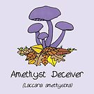 Amethyst deceiver - no smiley face by Immy Smith (aka Cartoon Neuron)
