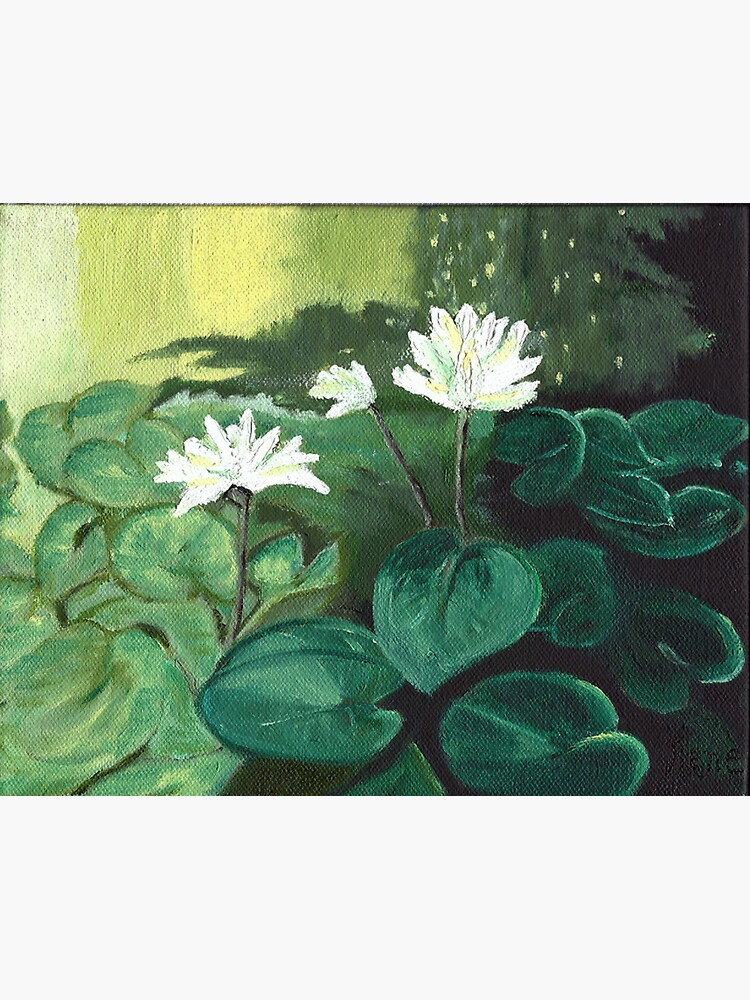 Lillies in the Pond by irenebernhardt