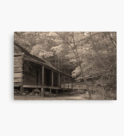 Ogle Place Canvas Print