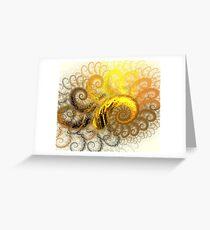 Sun Web Spirals Greeting Card