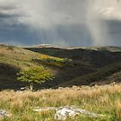 Snow clouds over Dartmoor by Judi Lion