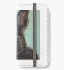 Clover iPhone Wallet/Case/Skin