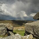 Storm clouds over Combestone Tor  by Judi Lion
