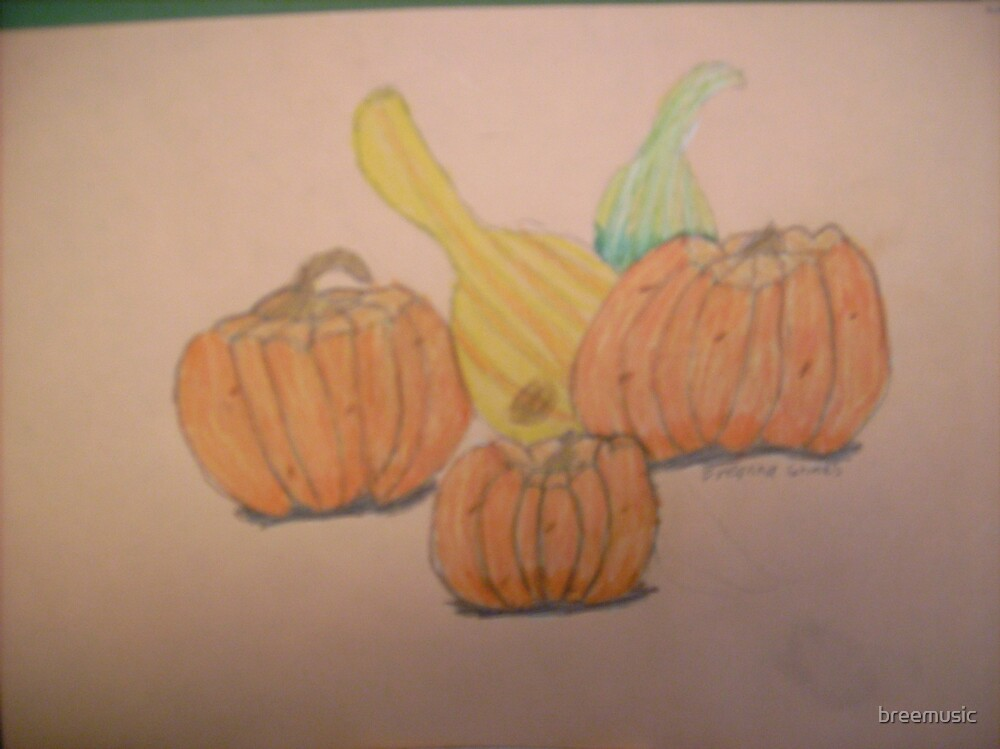 Gourd Pleasure by breemusic