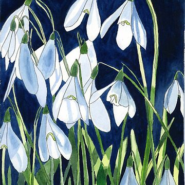 Snowdrops in the Sun by esvb