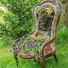 Seat of Purple Violas by Judi Lion