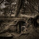 The Secret Tunnel by Dave Warren
