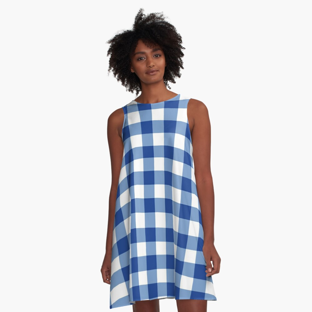 GINGHAM WHITE AND BLUE A-Line Dress Front