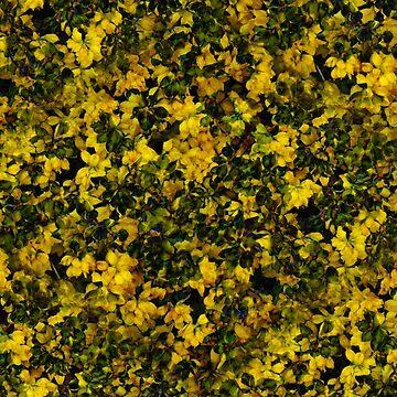 Blooming Yellow (pattern) by Yampimon